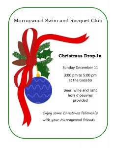 christmas-drop-in-2016